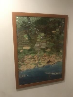 Hawaiian Artwork, Framed