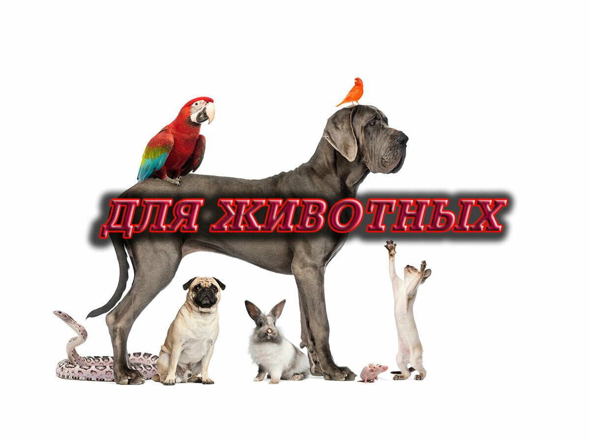 Лекарственные Средства для Животных - Шаман Алекс