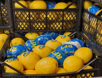 Citrons 1 kg