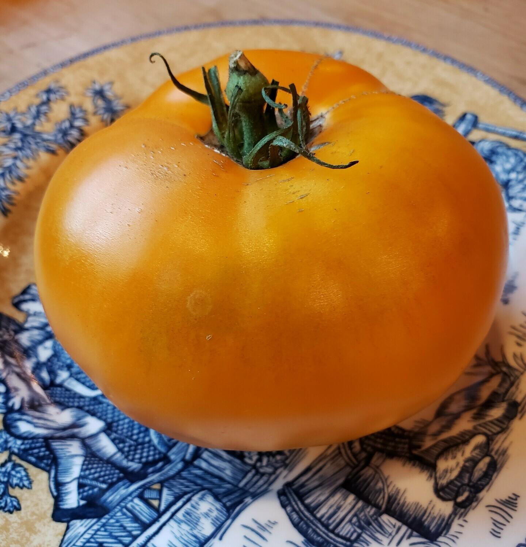 'Amana Orange'
