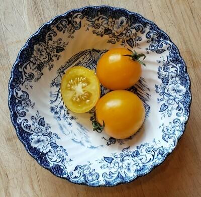 'Hartman's Yellow Gooseberry'