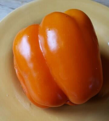 Orange Bell