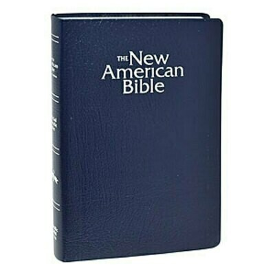 The New American Gift and Award Bible Navy Blue W2404BLU
