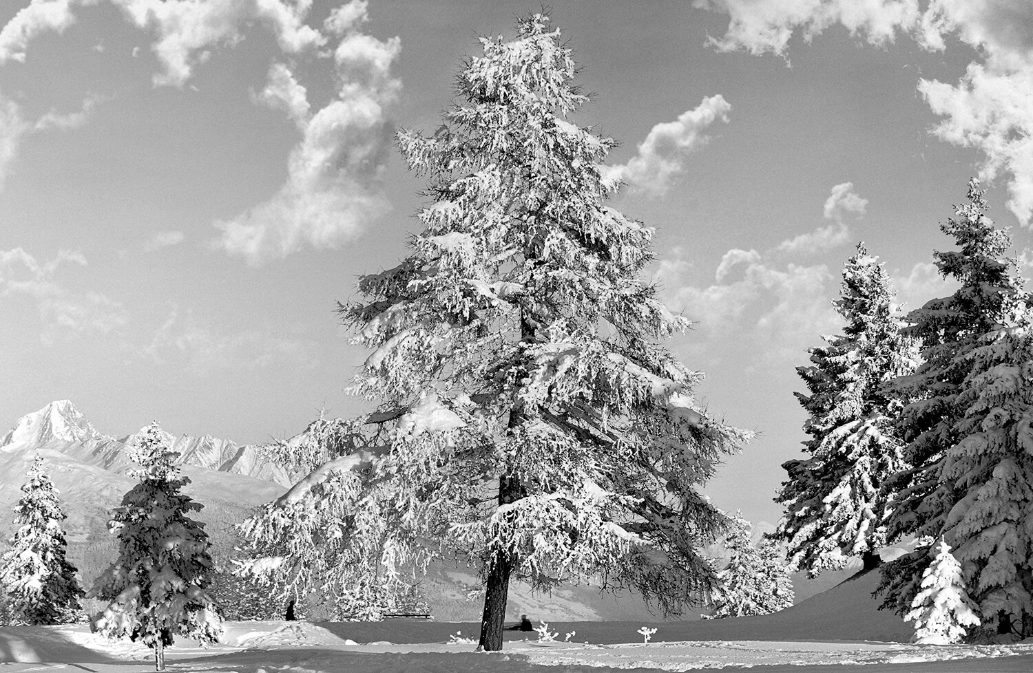 Photo - Ancienne Hiver #022