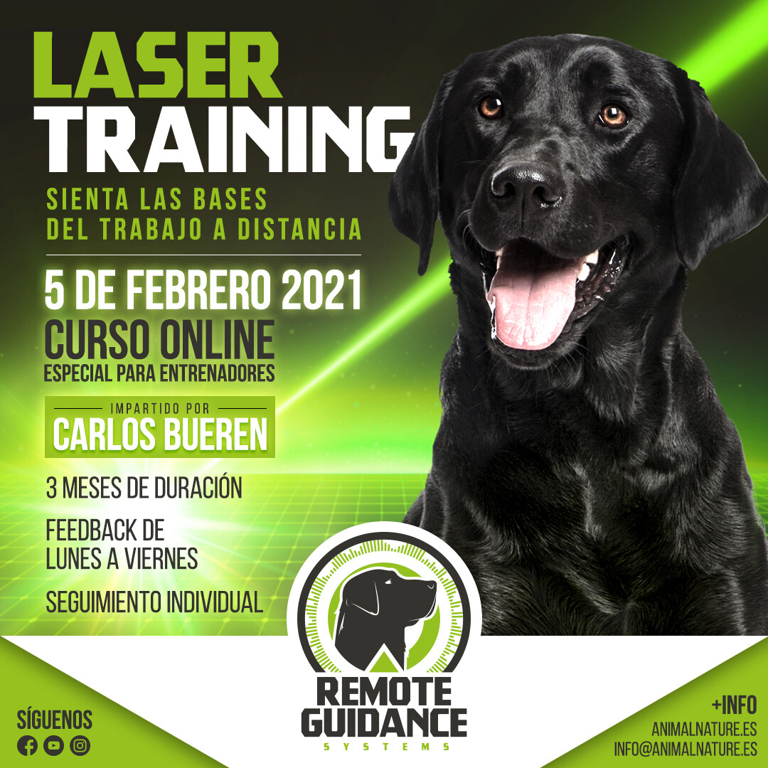Curso Online - Laser Training