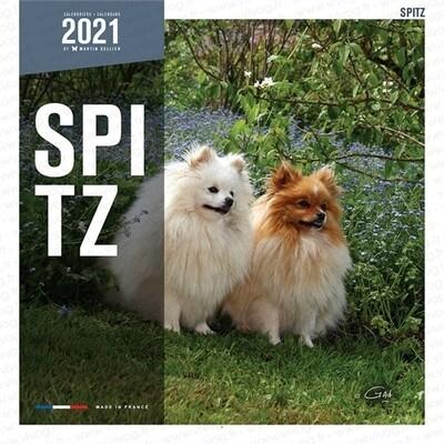 Calendrier 2021 Martin Sellier Spitz