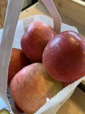 Fuji Apples 1lb