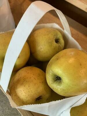 Gold Rush Apples 1lb