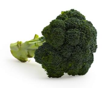 Broccoli (head)