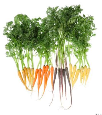 Carrots Rainbow Mix (bunch)
