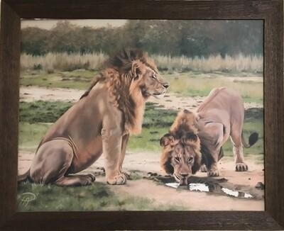 Keeping Watch(canvas print framed)