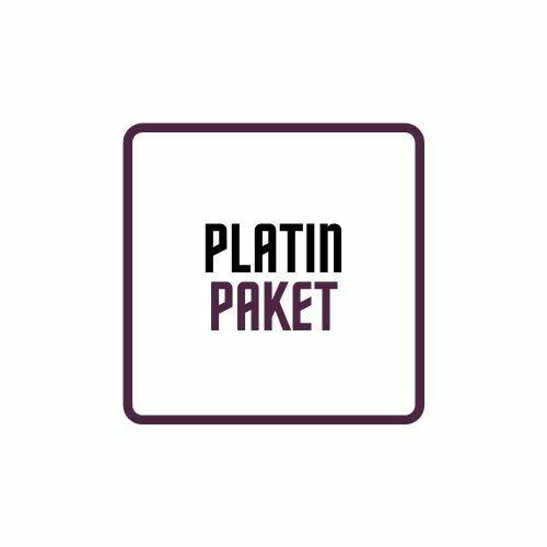 Platin Paket (Mixing+Mastering PRO)