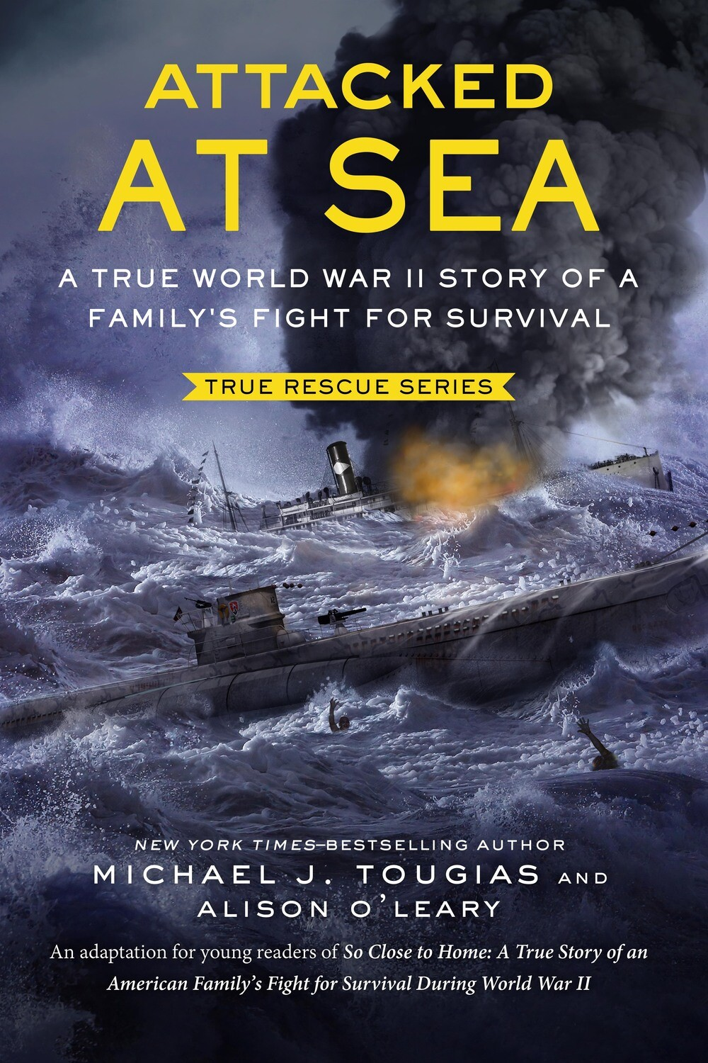 Attacked At Sea (Middle Reader, hardcover)