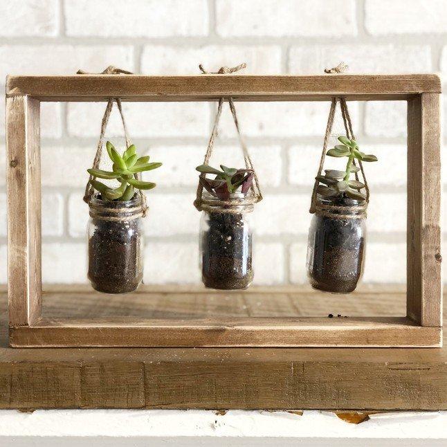 Hanging Succulent Frame