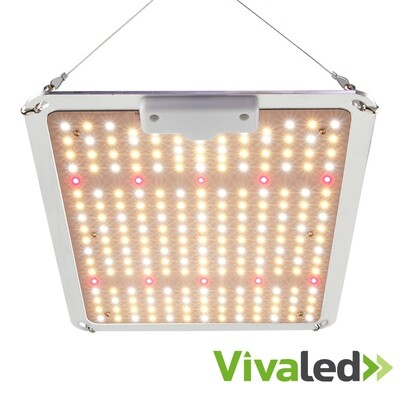 Quantum Board Dimmable Grow Light 110W