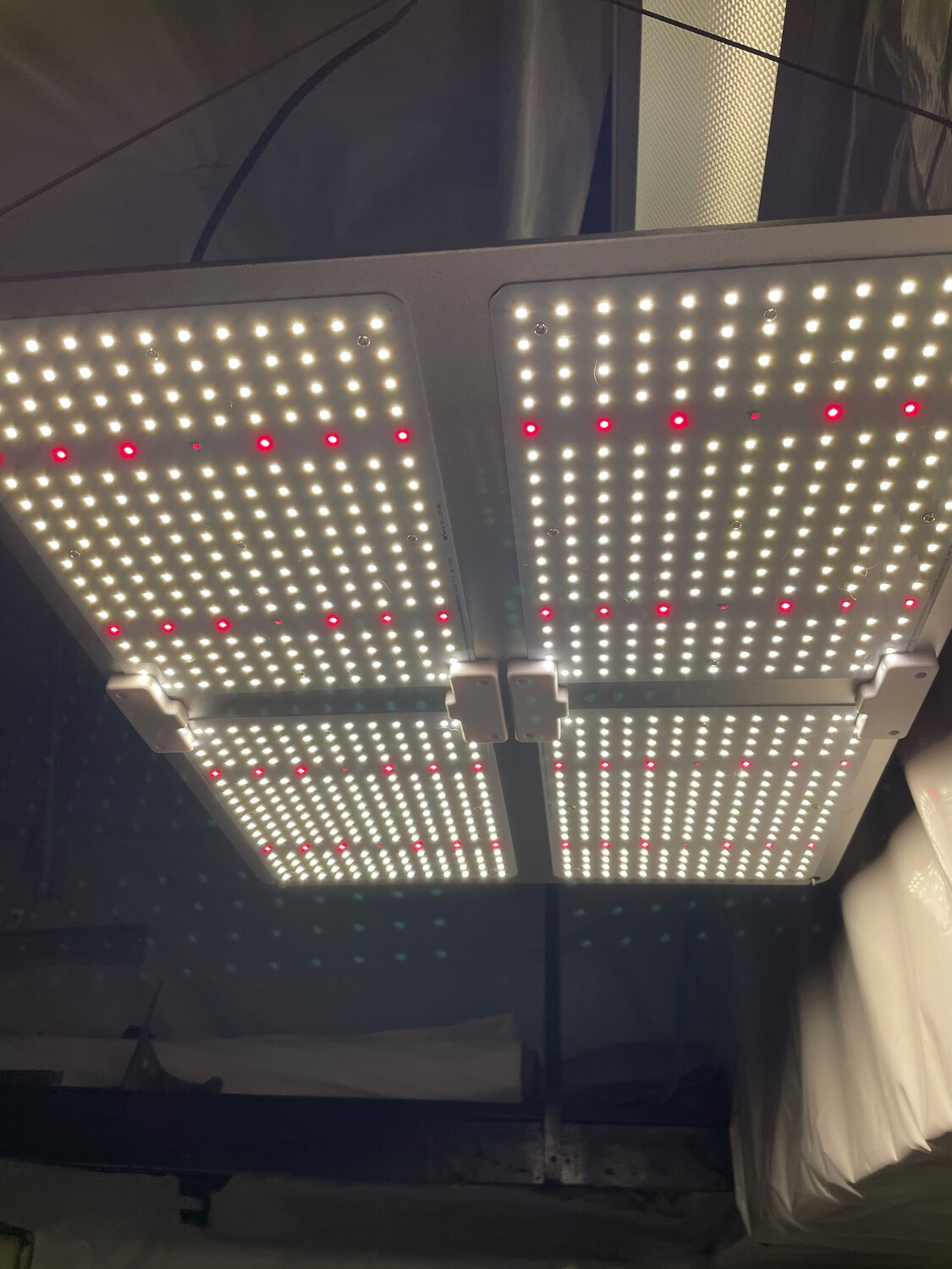 Quantum Board Dimmable Grow Light 440W