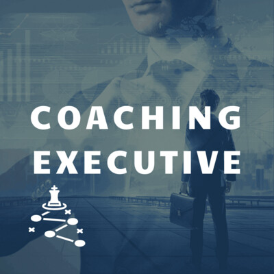 Coaching Executive 1 sesja online, GTU 12