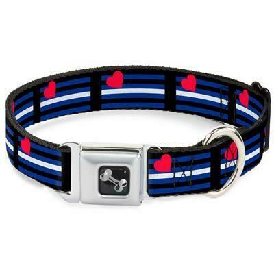 Buckle-Down Leather Pride Seatbelt Buckle Dog Collar