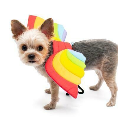 Rainbow Dog Wings