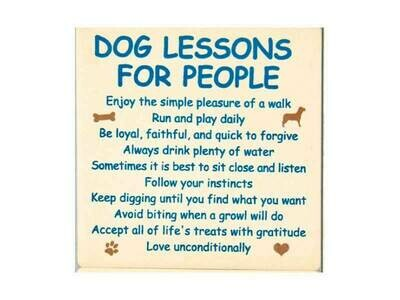 Absorbent Stone Coaster - Dog Lessons For People