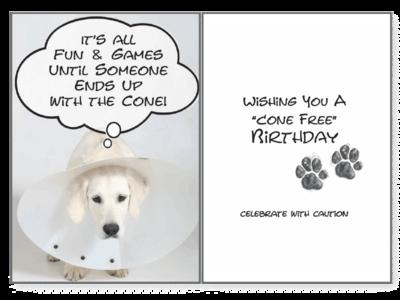Birthday Pet Greeting Card - Cone Free Birthday