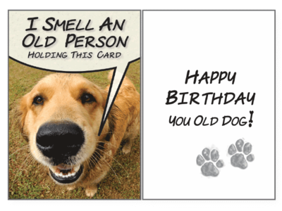 Birthday Pet Greeting Card - I Smell An Old Person
