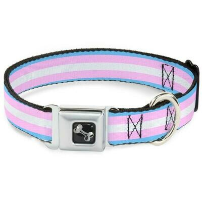 Buckle-Down Transgender Pride Seatbelt Buckle Dog Collar