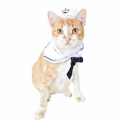 Sailor Costume For Cats And Small Dogs