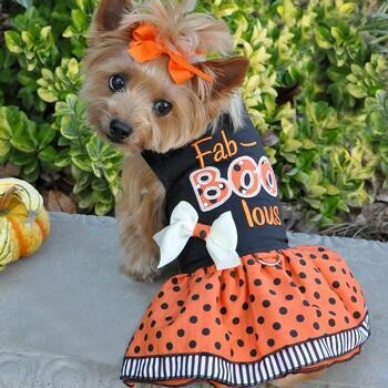 Halloween Fab-BOO-lous Dog Harness Dress