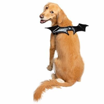 Bat Wings Harness Attachment For Dogs
