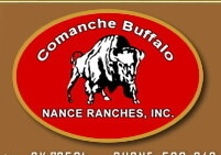Comanche Buffalo - Ground Patties - 1.3 lb. pkg.