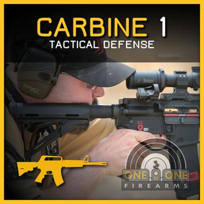 CARBINE 1- TACTICAL DEFENSE | DEC 5TH 2020, RANGE 10