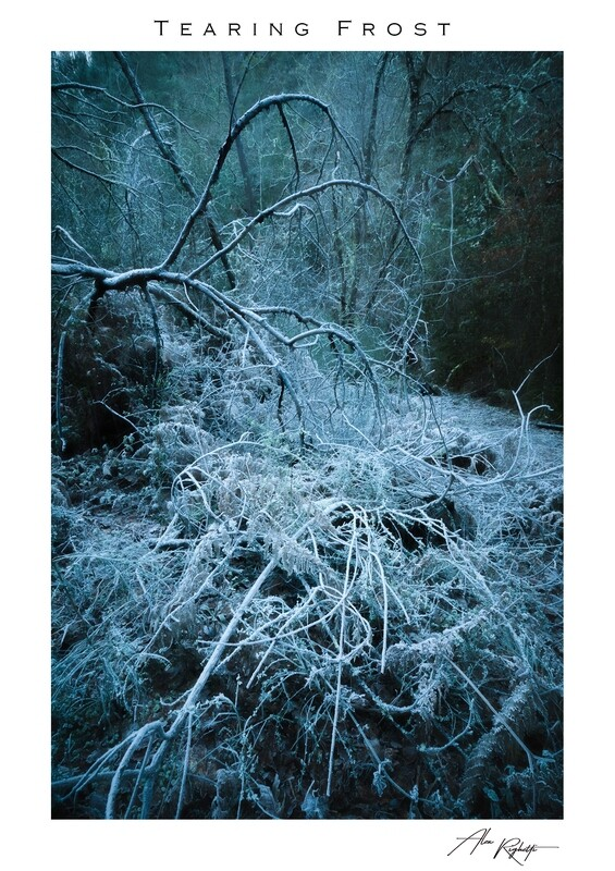 Tearing Frost