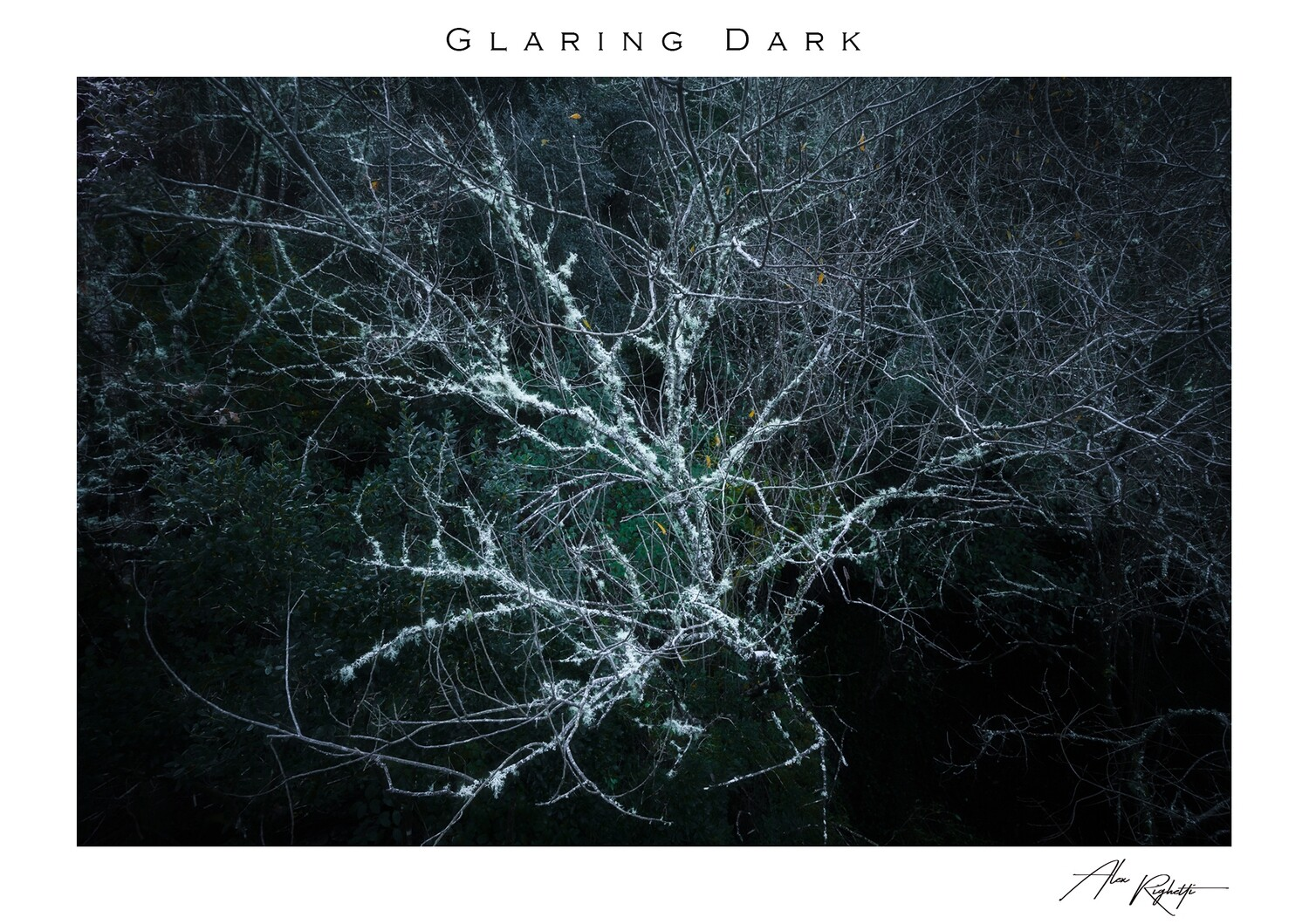 Glaring Dark (Special Edition)