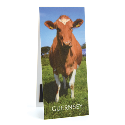 Guernsey Cow Magnetic Bookmark