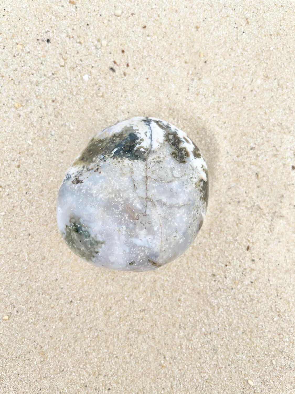 Hermit Crab Ocean Jasper