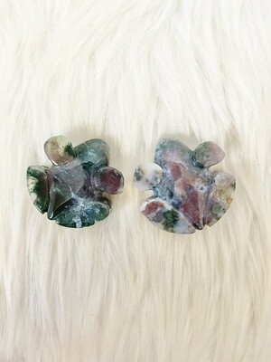 Ranitomeya Indian Moss Agate Frogs