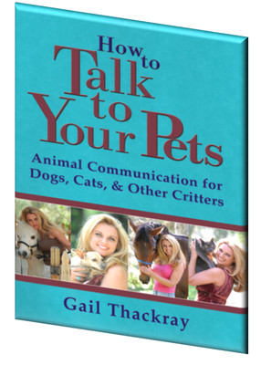How to Talk to Your Pets - Animal Communication for Dogs, Cats, & Other Critters