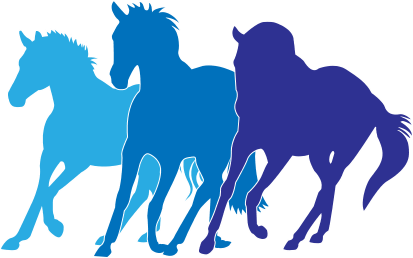 Pammy Stevenson Equestrian