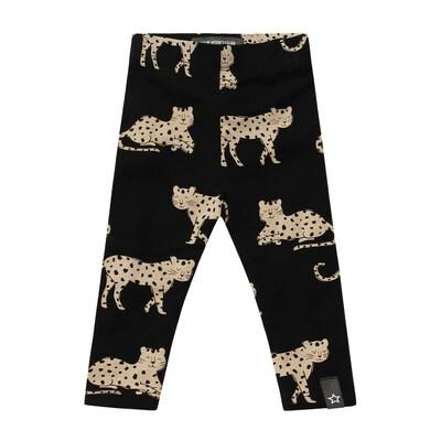 Wild Cheetahs Leggin Print