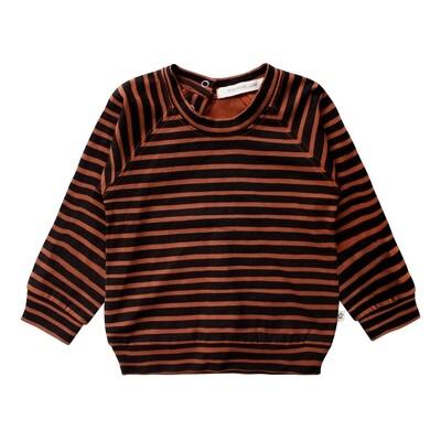 Arizona Stripes Swea stripe