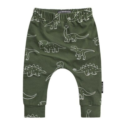 Dinosaurs Baggy Print