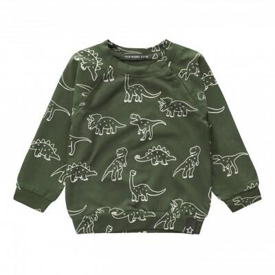 Dinosaurs Sweatshirt Print