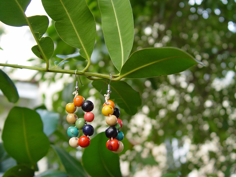 Açaí natural seeds Earrings
