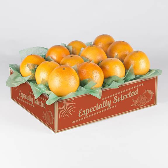 Navel Orange Gifts