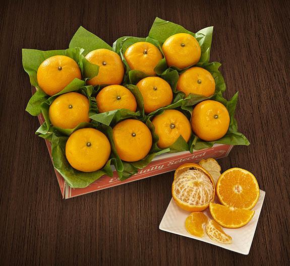 Sol Zest Mandarins