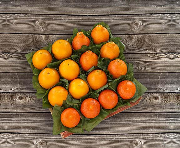 Premium Select Oranges