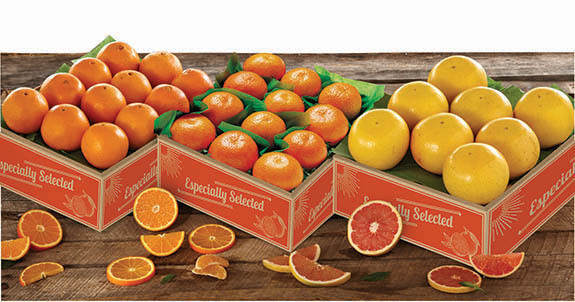 Triple Citrus Bonanza