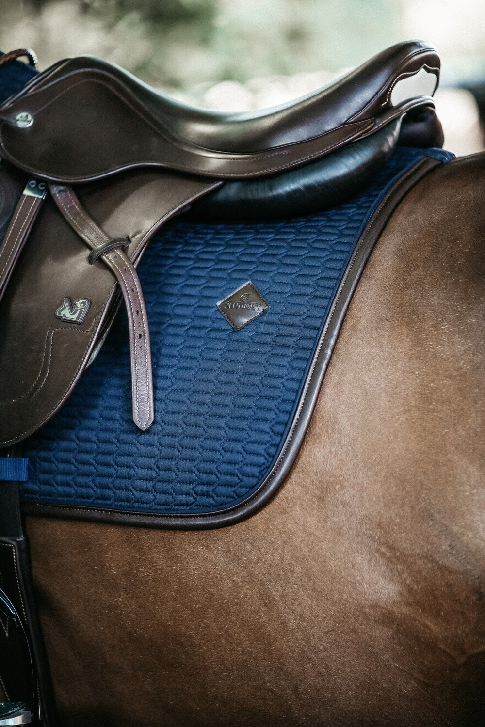 Kentucky Horsewear - Tapis Color Edition Leather