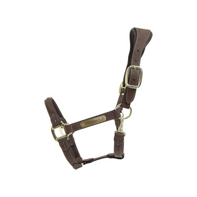 Kentucky Horsewear - Licol anatomique en suédine